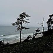 Oregon Coast Poster