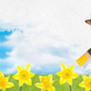 Painting Daffodils Poster