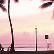 Palm Trees On The Beach, Waikiki Poster