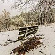 Park Bench In The Snow Covered Park Overlooking Lake Poster