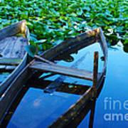 Pateira Boats Poster by Carlos Caetano