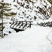 Pathway Through The Snow Poster