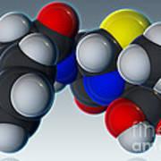 Penicillin V Molecular Model Poster