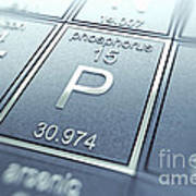 Phosphorus Chemical Element Poster