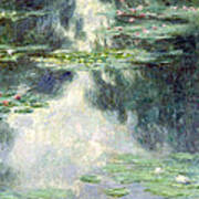 Pond With Water Lilies Poster