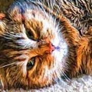 Pretty Kitty Poster