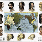 Racial Types, 19th Century Poster
