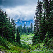 Rainer Glacial Meadow Poster