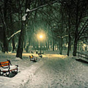 Red Bench In The Park Poster by Jaroslaw Grudzinski