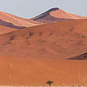 Red Dunes, Sossusvlei, Namib Desert Poster