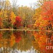 Reflections Of Fall Poster