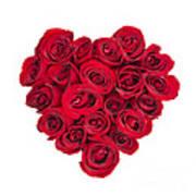 Rose Heart Poster by Elena Elisseeva