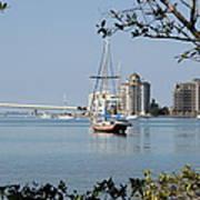Sarasota Bay  Poster