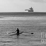 Sculling On The Bay Poster