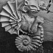 Seahorse Of The Garden Poster