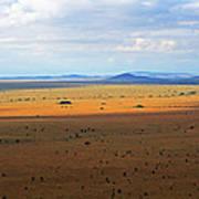 Serengeti Landscape Poster