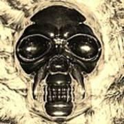 Skull In Sepia Poster