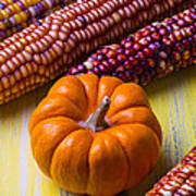 Small Pumpkin And Indian Corn Poster