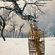 Snowshoes Leaning Against Birch Tree Snowscape Poster
