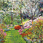 Spring Forest Vision Poster