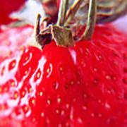Strawberries  Poster