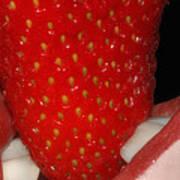 Strawberry Lips Poster by Joann Vitali