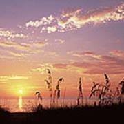 Sunset Over The Sea, Venice Beach Poster