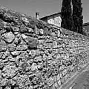 Tarquinia Muro Di Cinta Con Cipressi Poster