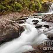 Tawhai Falls In Tongariro Np New Zealand Poster