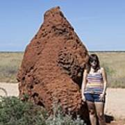 Termite Mound, Exmouth Western Poster