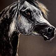 The Arabian Horse Poster
