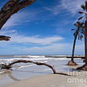 The Beach At Hunting Island State Park Poster