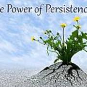The Power Of Persistence Poster