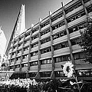 the shard building towering over melior street community garden London England UK Poster
