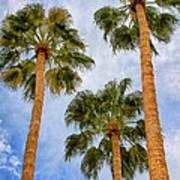 Three Palms Palm Springs Poster