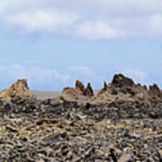 Timanfaya National Park Poster