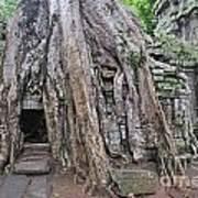 Tree Roots On Ruins At Angkor Wat Poster by Sami Sarkis
