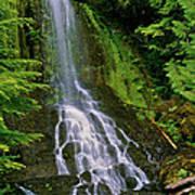 Twin Falls Creek Mount Rainier Poster