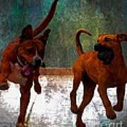 Two Dogs Poster