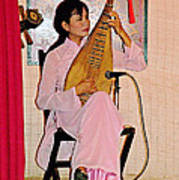 Two-stringed Lute Player At Wedding Ceremony Show In Binh Quoi Village-vietnam  Poster
