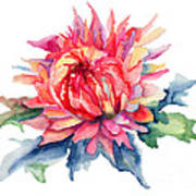 Watercolor Illustration With Beautiful Flowers  Poster