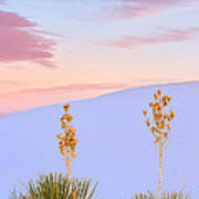 White Sands National Monument Poster