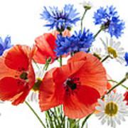 Wildflower Bouquet Poster
