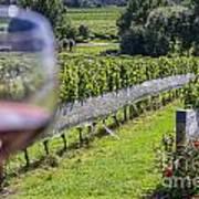 Wineglass In Vineyard Poster