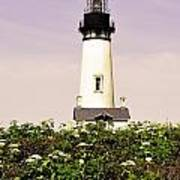 Yaquina Lighthouse In May Poster
