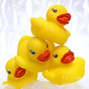Yelow Ducks Poster by Bernard Jaubert