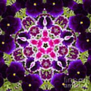 Flower Kaleidoscope Resembling A Mandala Poster