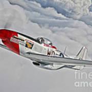 A P-51d Mustang In Flight Poster