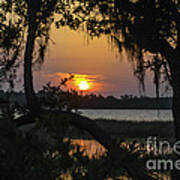 Lowcountry Spanish Moss Sunset Poster
