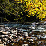 Williams River Autumn Poster
